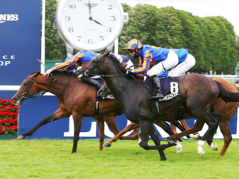 IRISH FLAT REVIEW 2020: Global triumphs for O'Brien brothers
