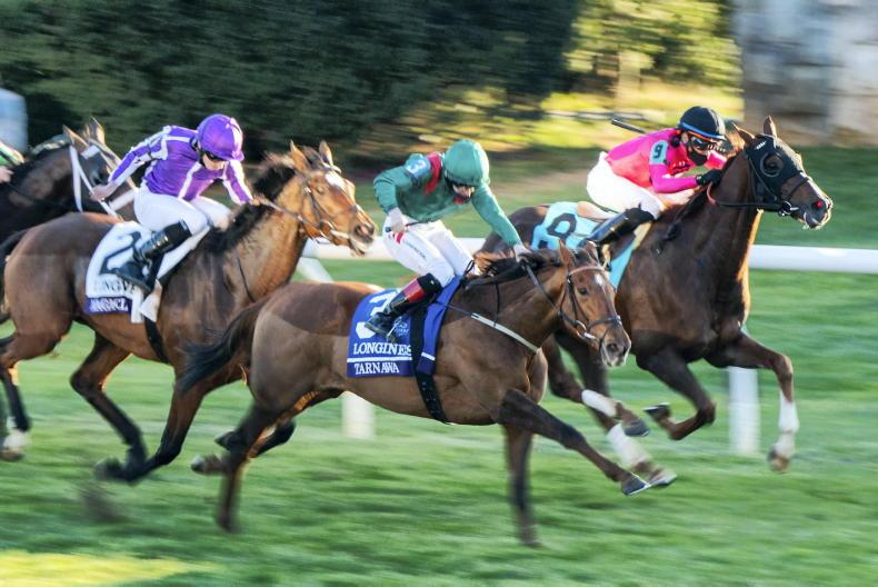 IRISH FLAT REVIEW 2020: Tarnawa delivers Breeders' Cup Turf for Weld