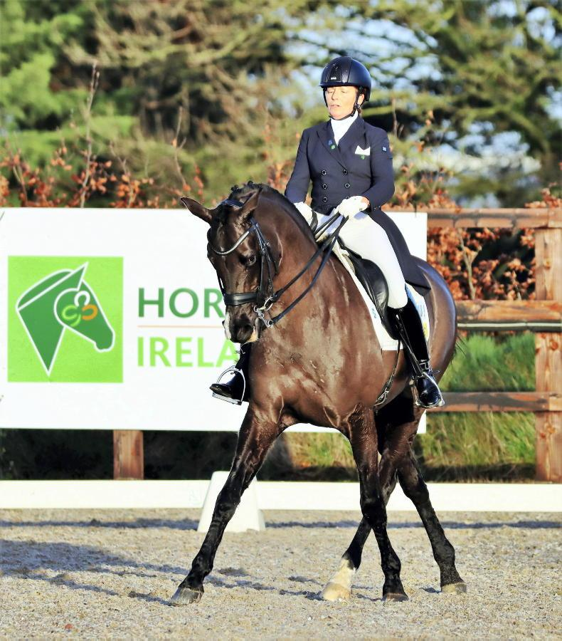 DRESSAGE: 'This will move dressage on to a par with eventing and show jumping'