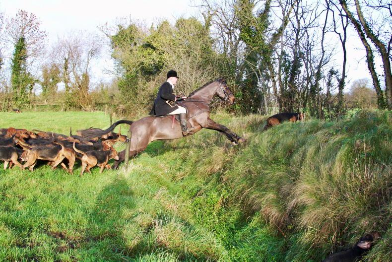 HUNTING: Embracing horses, hounds and fresh air