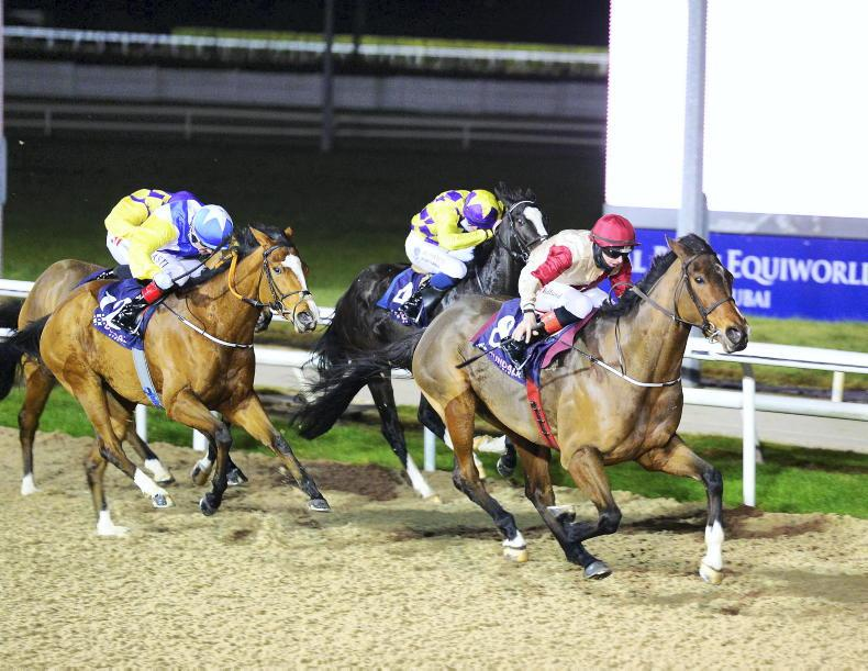 DUNDALK FRIDAY: Whatharm could jet off to Dubai