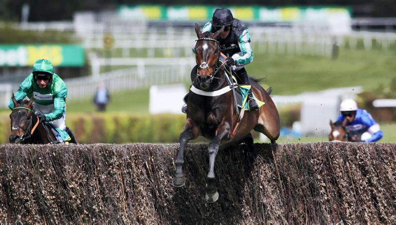 Altior on course to reappear in Desert Orchid