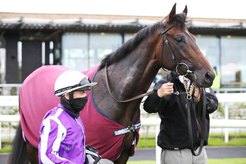NEWS: Aidan O'Brien excited about 'very special' High Definition