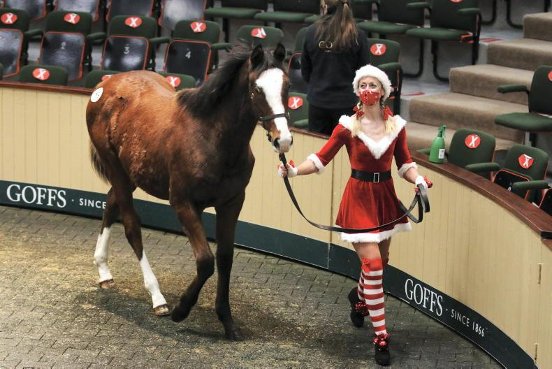 PARROT MOUTH: Mrs Claus brings a smile to Goffs