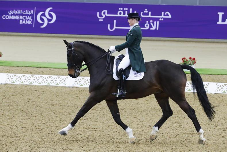 REVIEWS 2020: Irish dressage is on the up