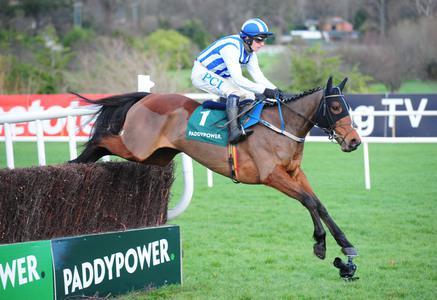 Castlebawn defies top weight for Leopardstown glory