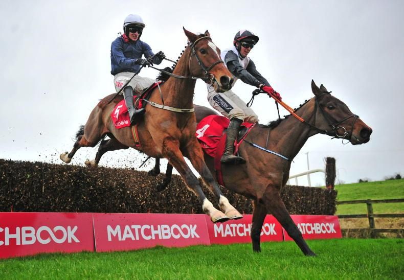 LIMERICK ST STEPHEN'S DAY: Tough Colreevy takes her chance