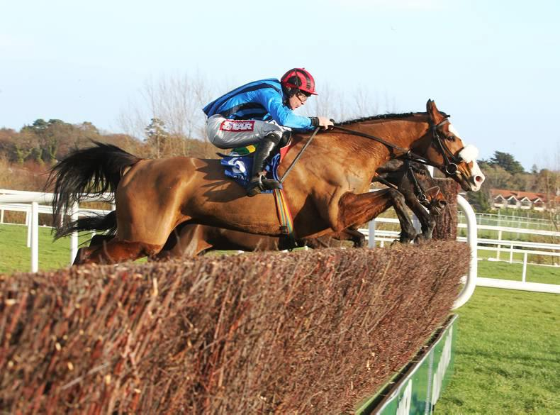 PREVIEW:  Treat Yourself has solid chance at Gowran