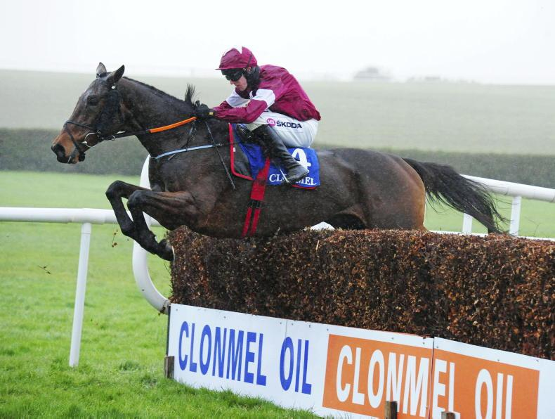 FAIRYHOUSE SUNDAY: Shattered Love can add to chase record