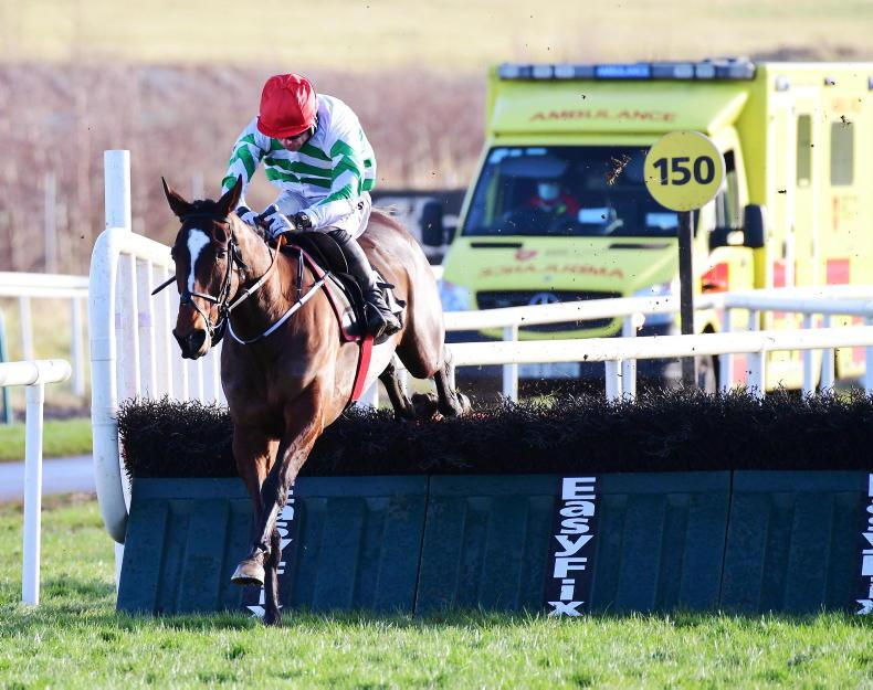 LIMERICK TUESDAY: Much better from Grand Roi on second start