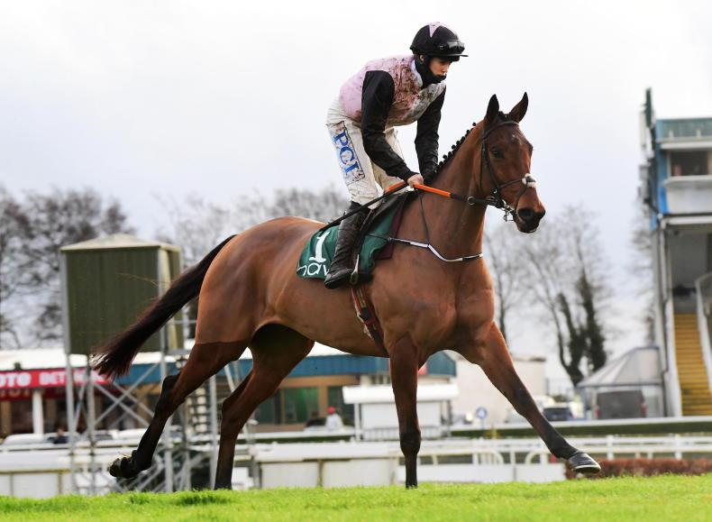 Bob Olinger on course for Lawlor's Of Naas