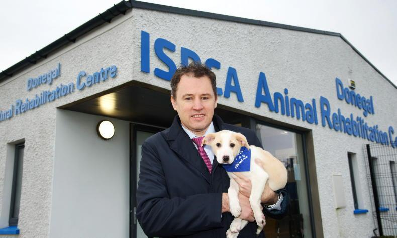 PONY TALES: Minister visits the ISPCA