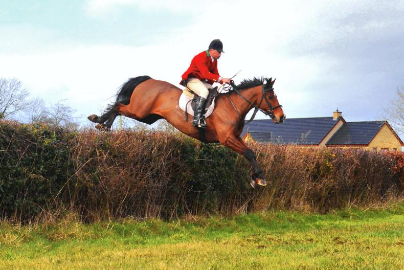 PROFILE - Ryan Carvill: A huntsman and a horseman