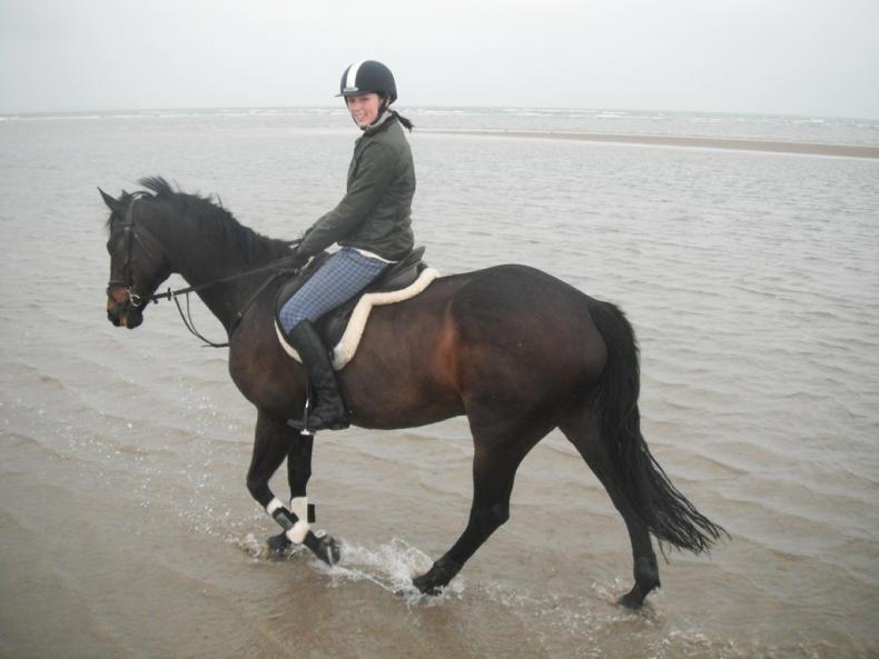 EQUESTRIAN INDUSTRY PROFILE: Elaine Dunne