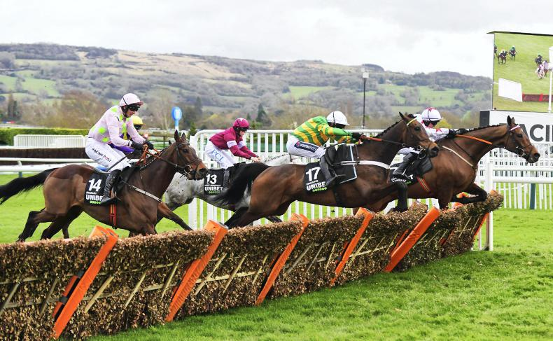 Epatante and Buveur D'Air on course for Champion Hurdle