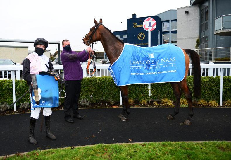 BREEDING INSIGHTS: Four generations of Parkhill magic produces Naas star
