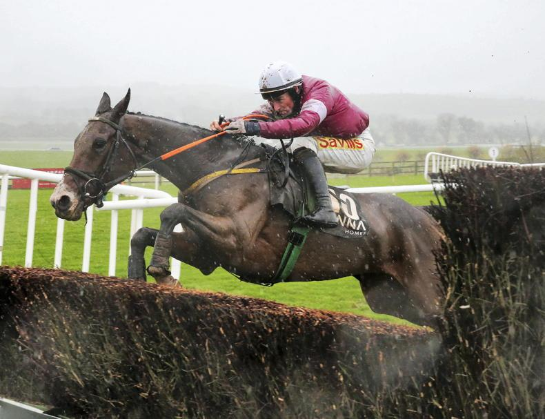 Daly Tiger roars in Fairyhouse feature