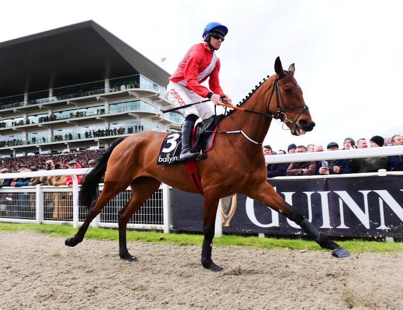 Big names headline novice chase entries at Cheltenham