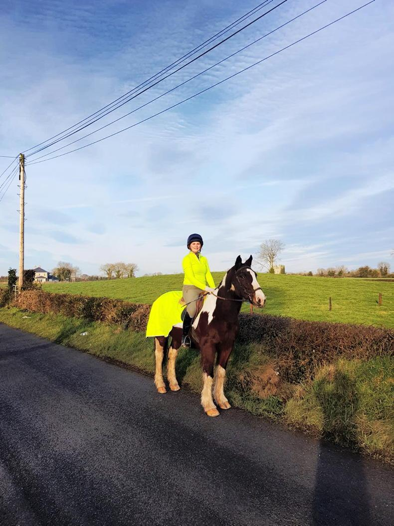 NEWS: Equine road safety survey launched