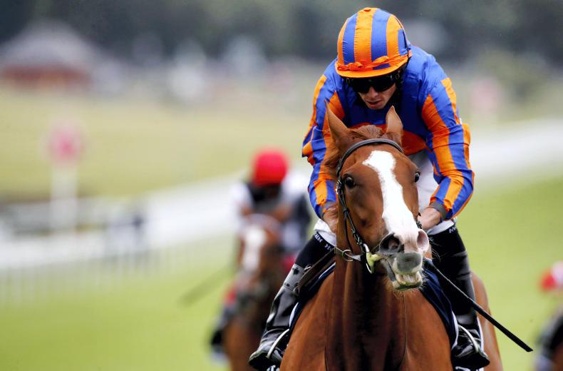 WORLD RANKINGS - IRISH HORSES: Love and Mogul promise much for 2021