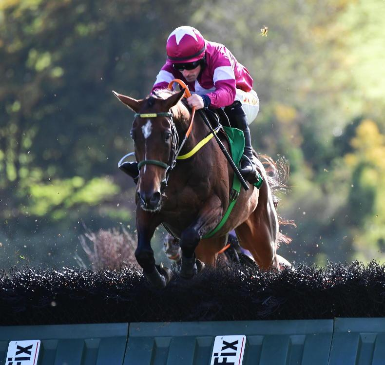 NAAS PREVIEW: Beacon has the Edge in the Limestone Lad