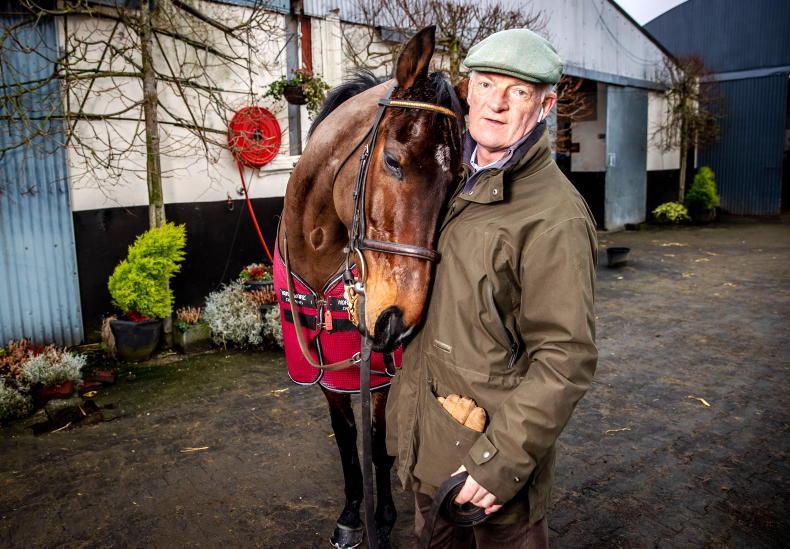 TALKING TRAINER: Willie Mullins on his Dublin Racing Festival Grade 1 runners