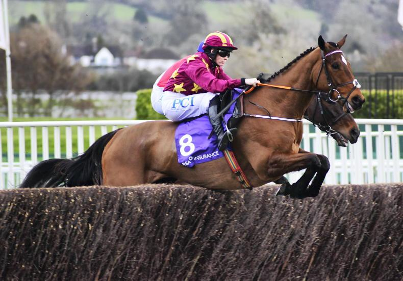 Minella Indo heads five left in Irish Gold Cup