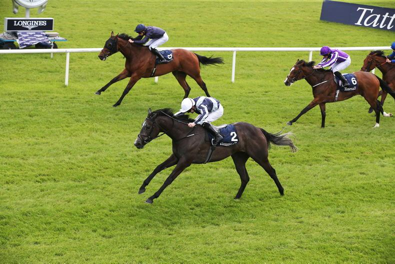AIR: On Course: Curragh: Alpha Centauri to be honoured