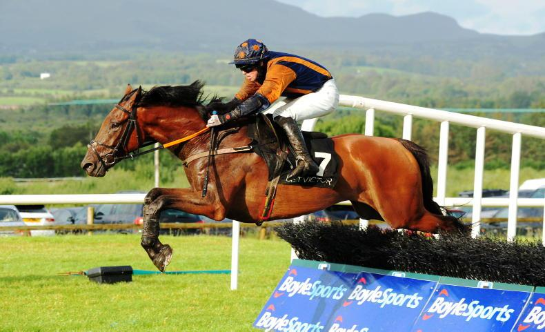 LEOPARDSTOWN SUNDAY: Prepare for Unexpected success