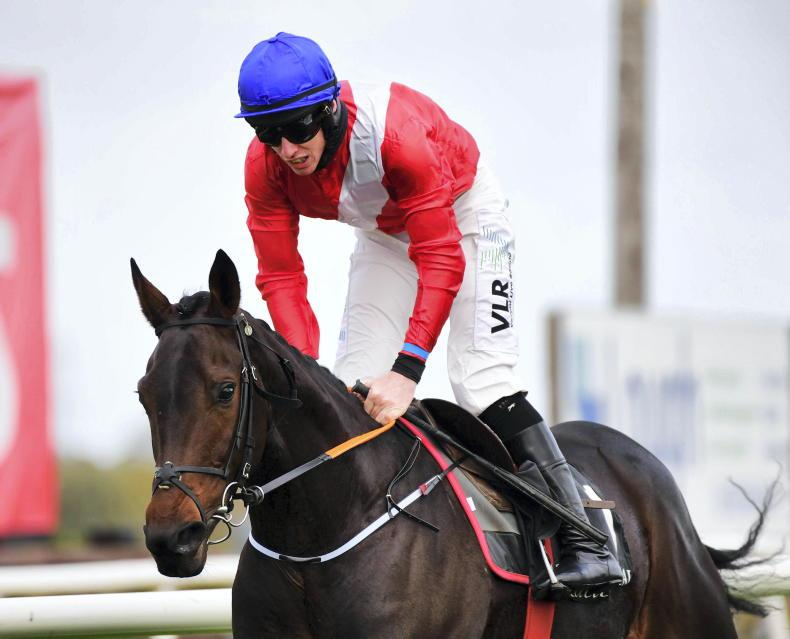 LEOPARDSTOWN SUNDAY: Quilixios has the quality