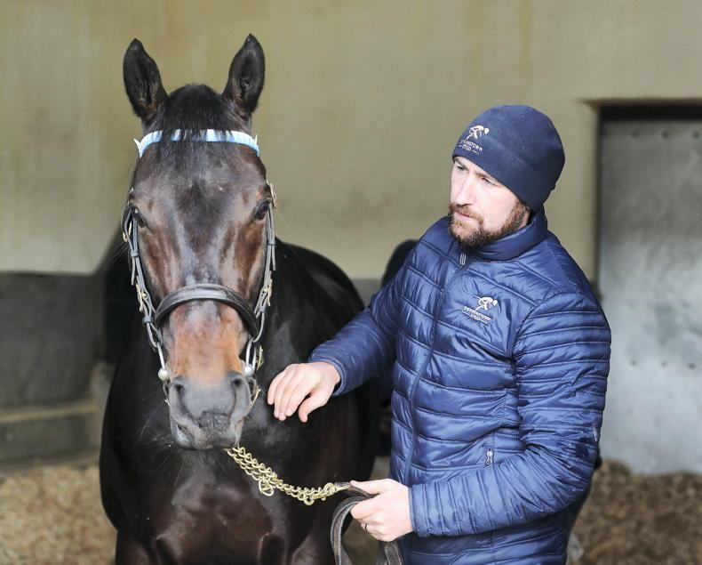 SIRE REVIEWS: Standing at Derrinstown Stud: Awtaad