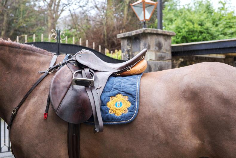 PONY TALES: Aileen and Oscar stepping out