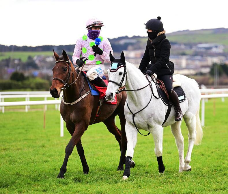 LEOPARDSTOWN TV: 'Just put a bridle on me and let me go'