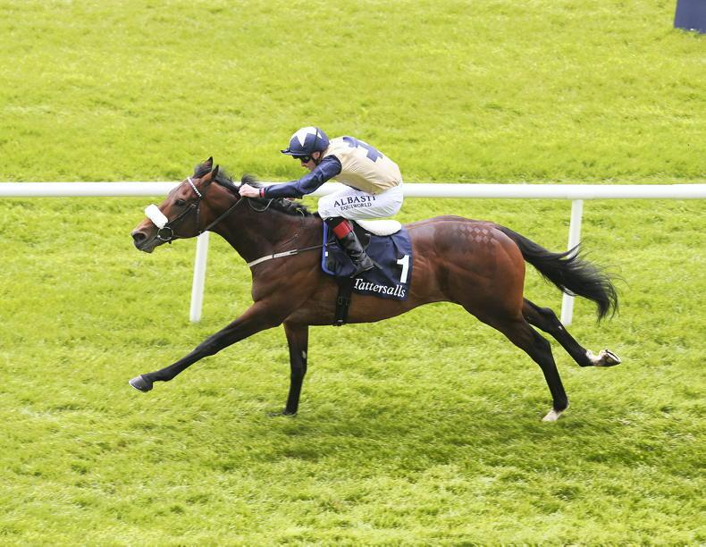 SIRE REVIEWS: Standing at Ballylinch Stud: Fascinating Rock