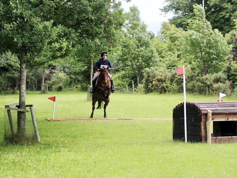 HORSE SENSE: The bumpy road to self-progression