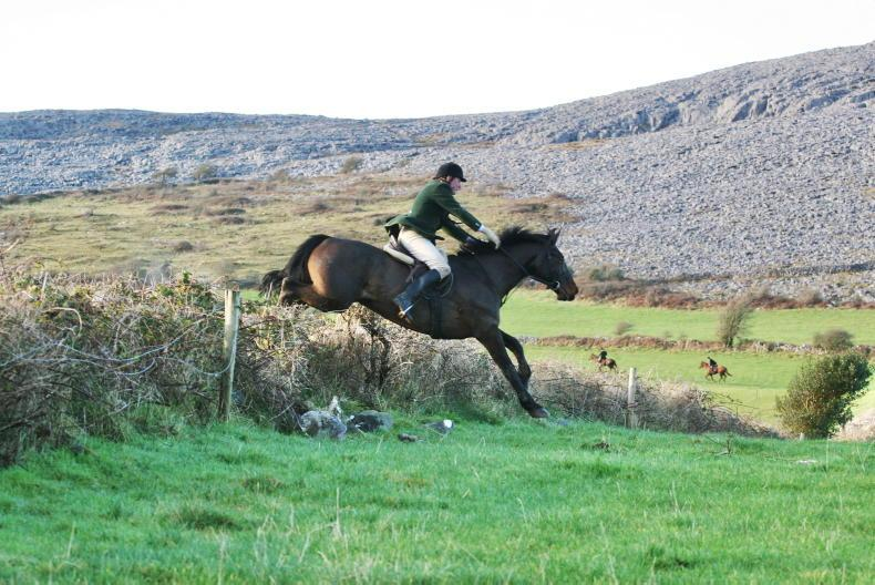 PONY TALES: Flashback - up and over the stone walls!