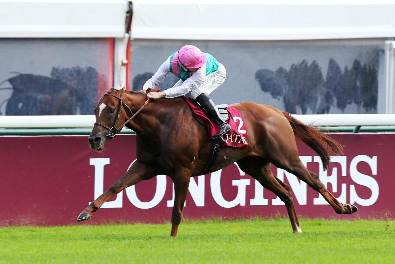 ARQANA FEBRUARY SALE: Buoyant start to sale season in Deauville