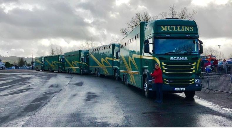 NEWS: Stud farms concerned over delays to mare and foal transport