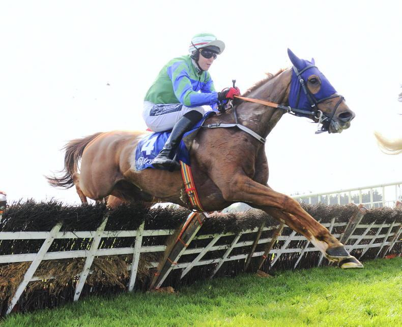 Setback scuppers Cheltenham run for Ronald Pump