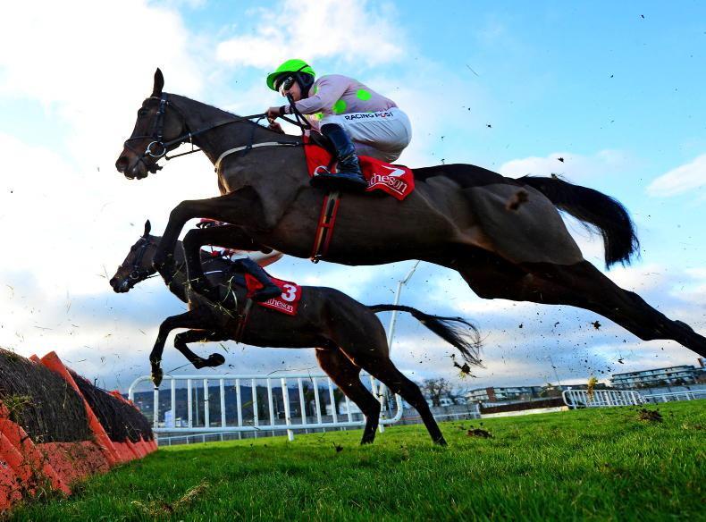 Saint Roi to miss Champion Hurdle
