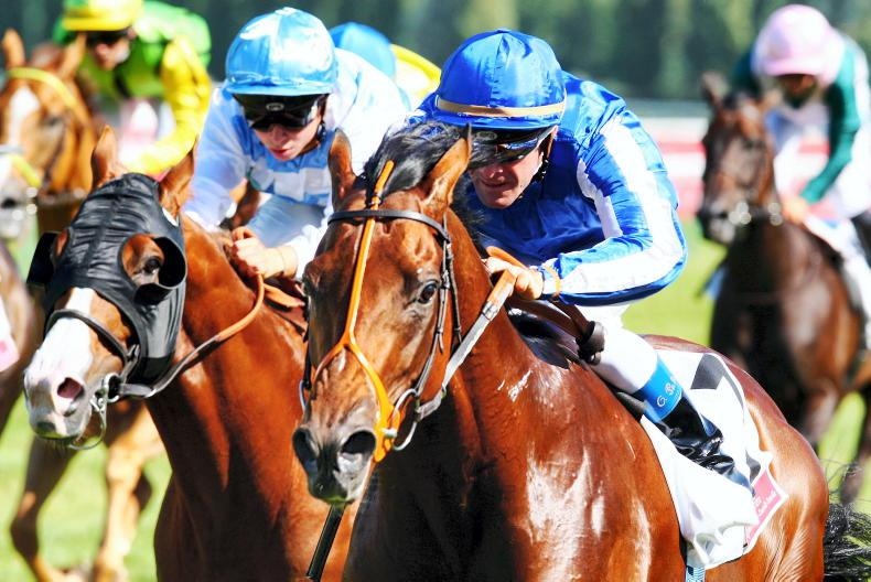 SIRE REVIEWS: Standing at Rathasker Stud: Coulsty