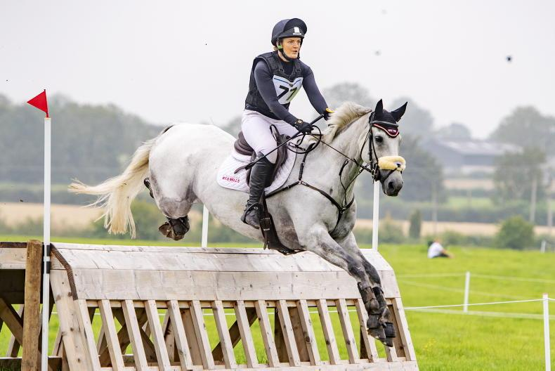 PONY TALES: New platform aims to support ex-racehorses