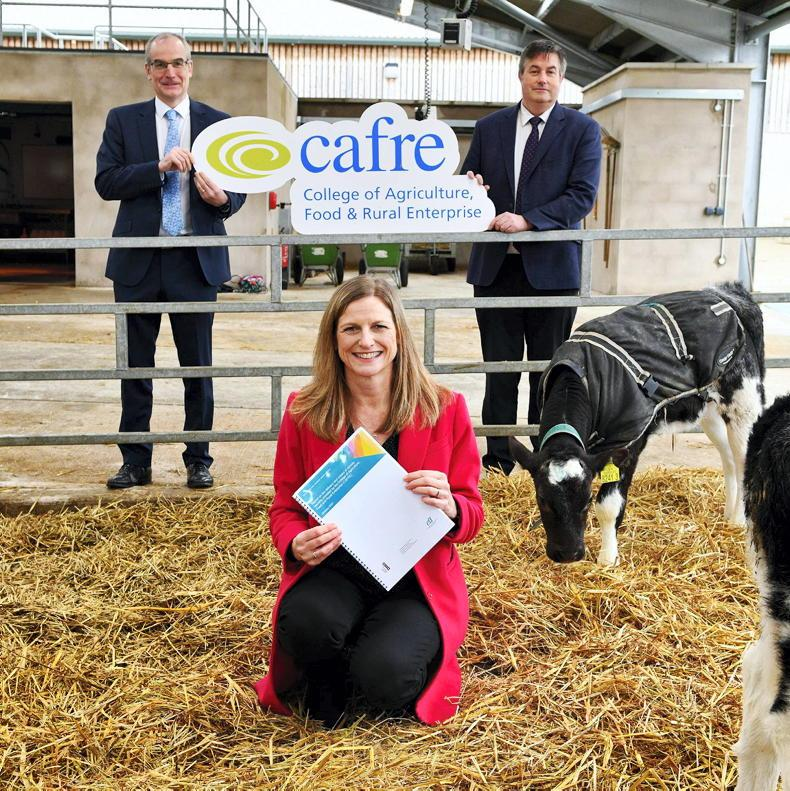 PONY TALES: CAFRE rises to the online challenge