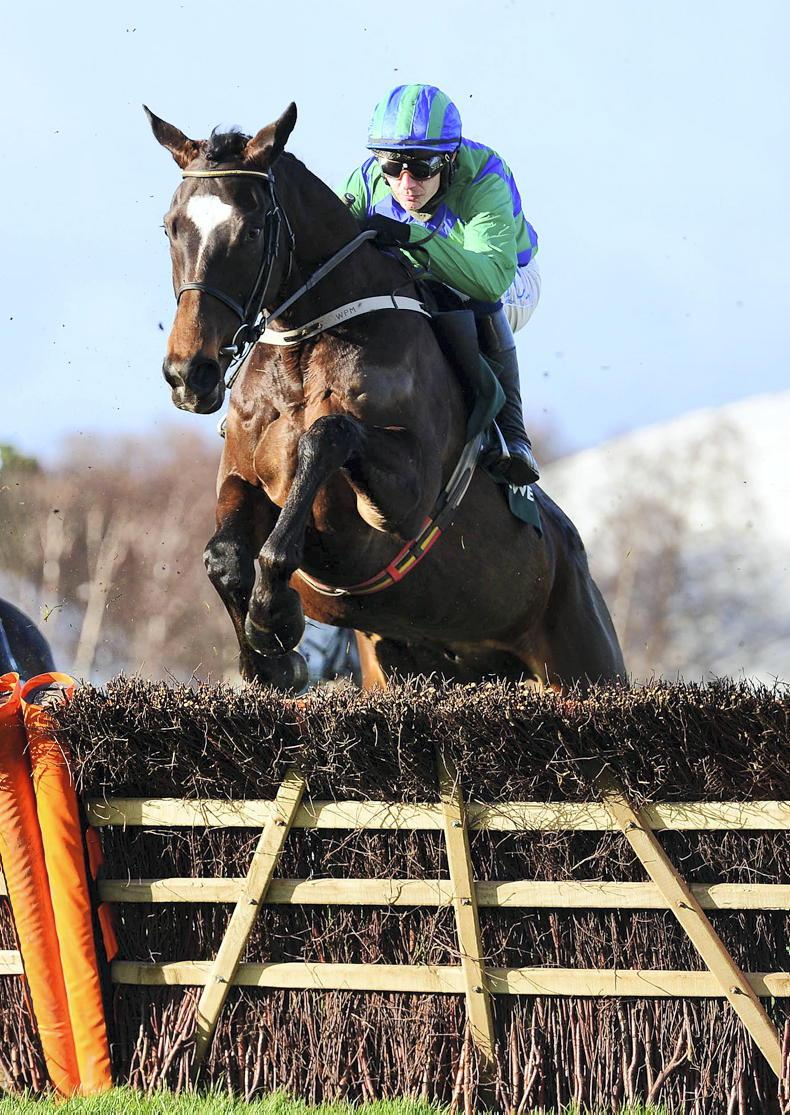 CHELTENHAM: Pointing the way to Festival success