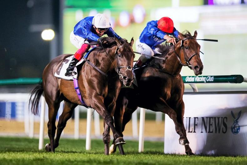 UAE: 100 not out as Appleby lands a treble