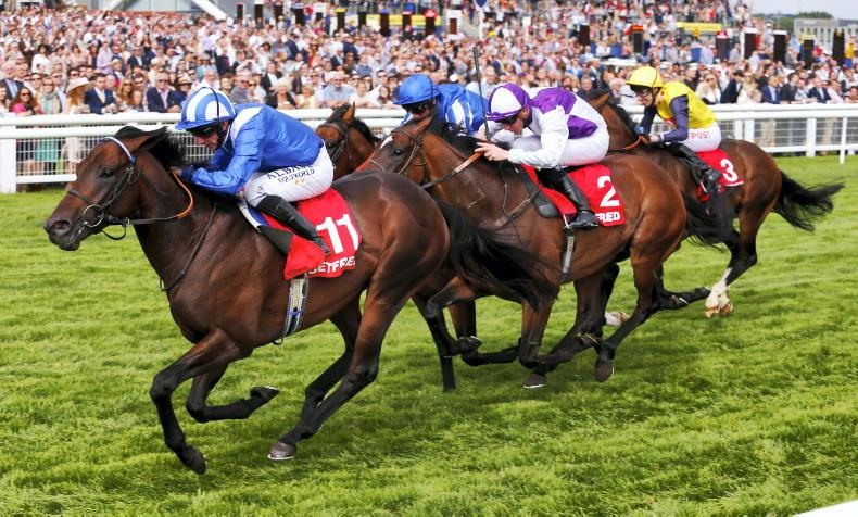 SIRE REVIEWS: Standing at Whitsbury Manor Stud: Adaay