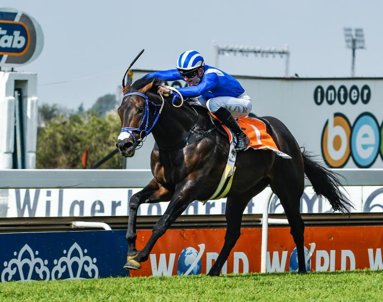 SOUTH AFRICA: Mighty Malmoos on course for Derby