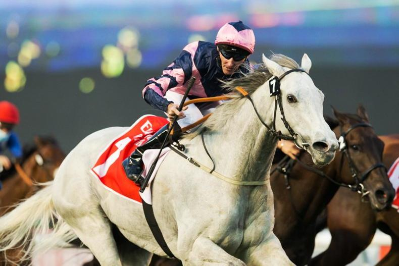 UAE: All that Glitters is gold for O'Meara