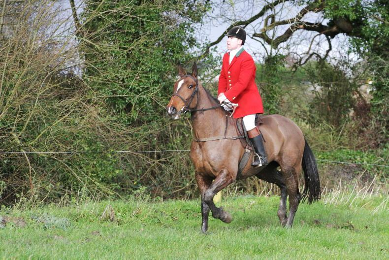 NEWS: Jamie Byrne appointed as Duhallow huntsman