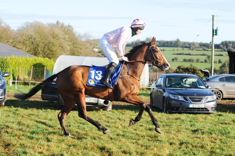 PREVIEW: WEXFORD SATURDAY: Gris Gris can come out on top